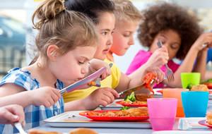 Implications nutritionnelles sur l'offre alimentaire en restauration scolaire des directives françaises et des modifications de pratiques liées aux plats protidiques