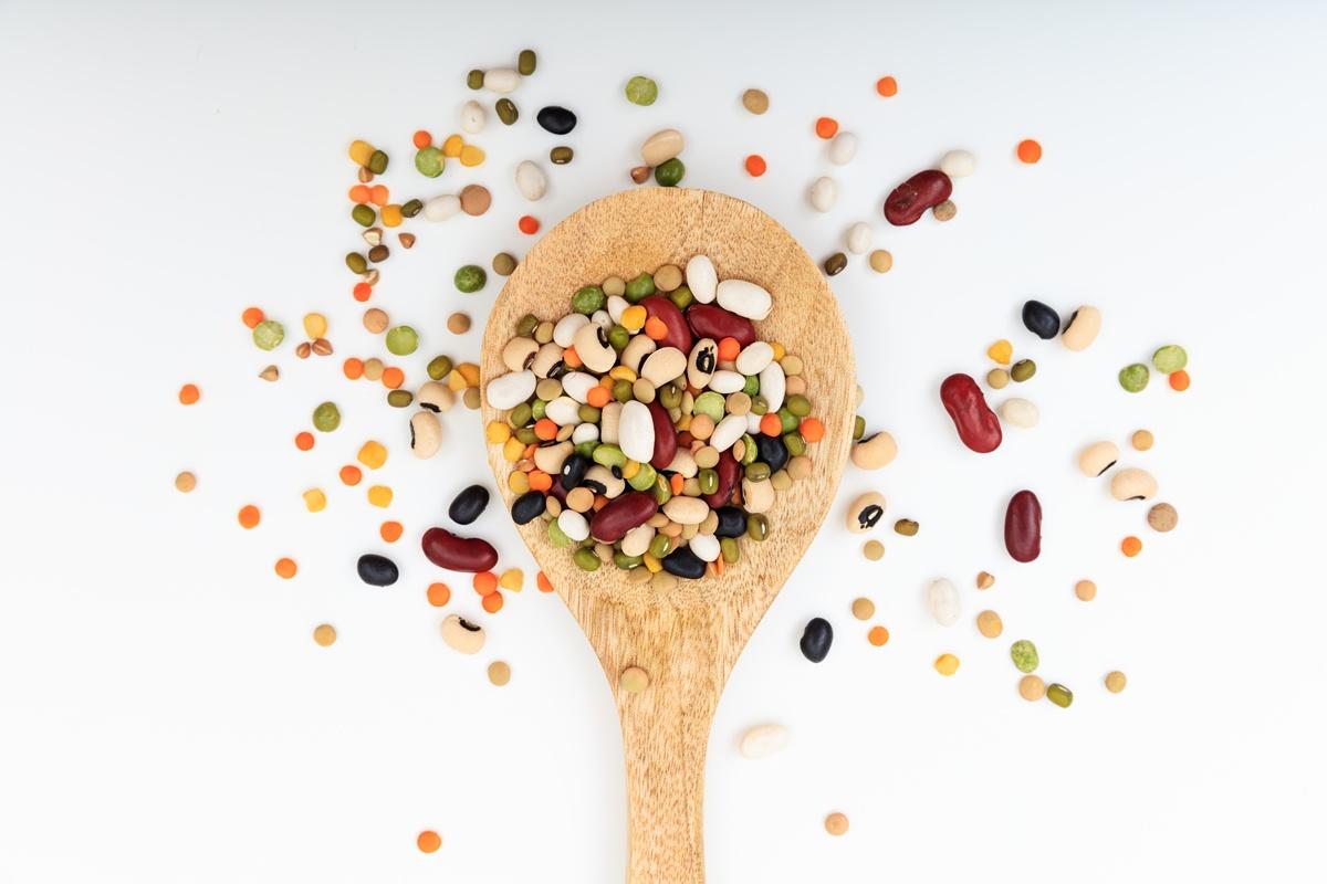 Le CNRC publie un livret de recette végétariennes